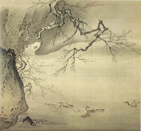 canards sur la riviere-1 (1)